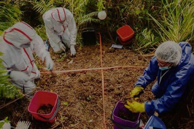 Penemuan jenazah GracePenemuan jenazah Grace. FOTO: BBC