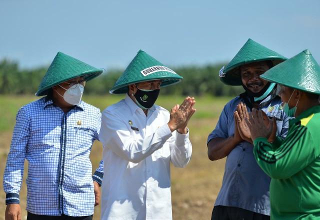 Gubri menghadiri penanaman jagung di Dumai.