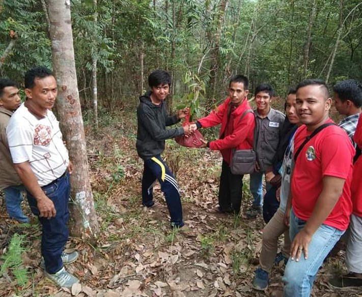 Penanaman Pohon di Atas Bukit Anabawa.