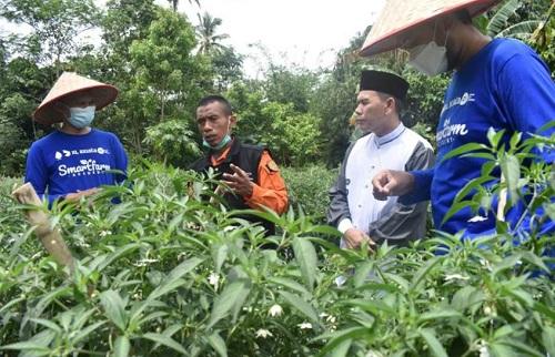 Ketua Majlis Ta'lim XL Axiata (MTXL), Nashrul Hendarsyah mendengarkan penjelasan dari Riyadno - Presiden Smart Farm Academy yang didampingi K.H. Amirul Mukminin - Pimpinan Ponpes Nurul Kholic dan  Cartesius Nugroho - Head of Ziswaf MTXL.