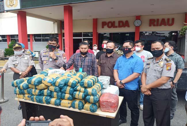 100 Kg ganja kering diamankan Polda Riau.