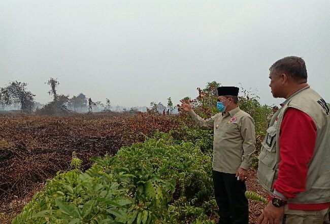 Walikota Dumai H Zulkifli AS meninjau karhutla di Kelurahan Bangsal Aceh Kecamatan Sungai Sembilan Kota Dumai, Rabu (18/3/2020).