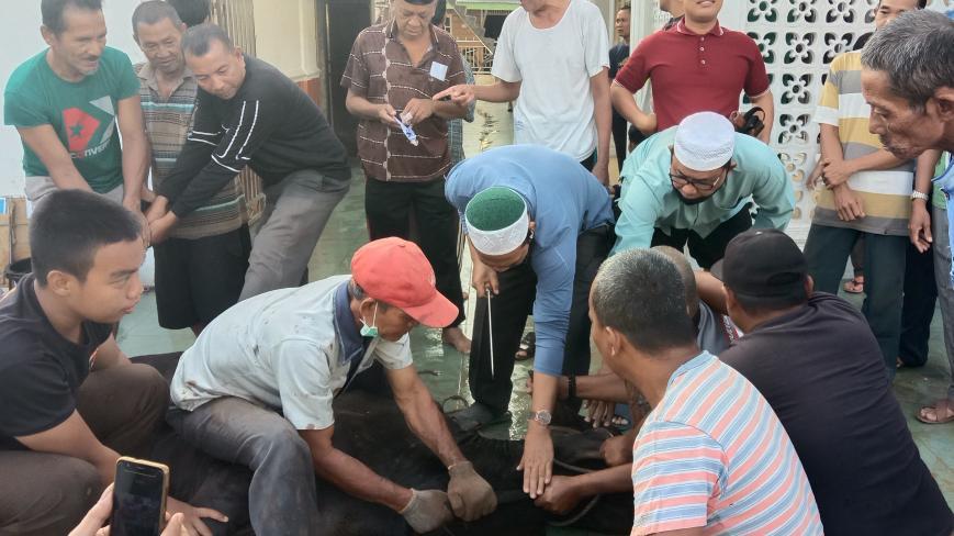 Bupati Rokan Hilir (Rohil), H Suyatno AMp saat penyembelihan hewan kurban di Masjid Al-Khairiyah.