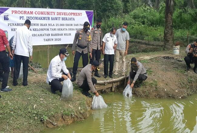 Kapolres Rohul AKBP Taufiq Lukman Nurhidayat, pihak PT ISB, Camat Rambah Hilir, Kades Rambah, dan pihak TNI, taburkan 25 ribu ekor benih ikan nilakolam Kelompok Tani Sekata.