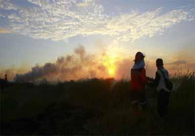 Petugas Manggala Agni memadamkan kebakaran lahan gambut di Desa Sungai Rambutan, Ogan Ilir, Sumatera Selatan, Kamis (15/8/2019). FOTO: Antara/Ahmad Rizki Prabu