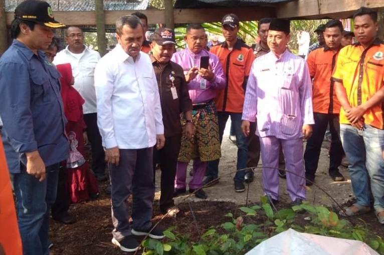 Gubri bersama rombongan melakukan peninjauan langsung di Arboretum Gambut Marsawa binaan CSR PT Pertamina (Persero) RU II Sungai Pakning Kecamatan Bukit Batu, Jum