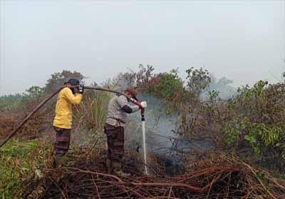 Polsek Bangko sampai saat ini terus melakukan pendinginan di lahan yang terbakar yang terletak di Desa Labuhan Tangga Besar.