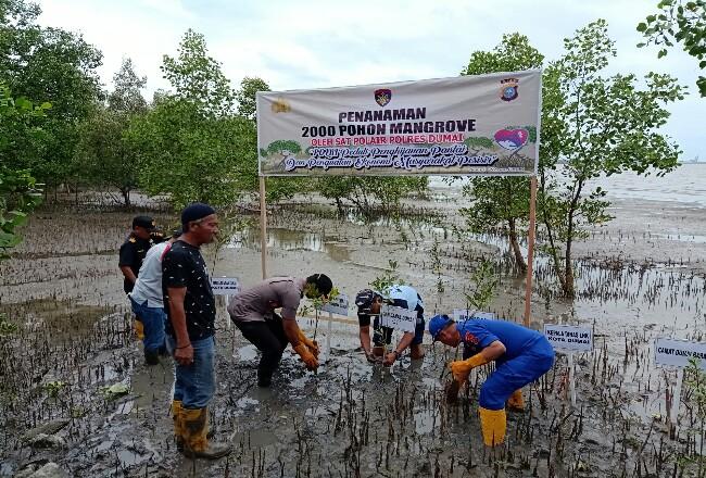 Dir Pol Air Polda Riau Kombes Pol Badarudin didampingi Kapolres Dumai AKBP Andri Ananta Yudhistira menanam mangrove di pelabuhan TPI Dumai.