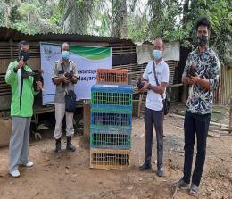 Kelompok Ternak Ukui Jaya memperoleh bantuan ayam lokal sebanyak 80 ekor, terdiri dari 10 ekor ayam jantan dan 70 ekor ayam betina