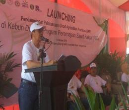 Gapoktan Manunggal Sakti mendapatkan dana PSR sebesar Rp 3,15 miliar untuk lahan seluas 126 hektare.