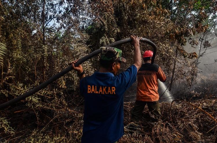 "<div><font size=""3"">Satgas Karhutla melakukan proses mopping up (pendinginan) di bekas lahan yang terbakar di Kelurahan Air Hitam, Kecamatan Payung Sekaki, Pekanbaru, Minggu (21/7/2019). Upaya pemadaman lahan dan hutan terus dilakukan agar kebakaran tidak semakin meluas. <b>FOTO: Wahyudi</b></font></div><div><br></div>"
